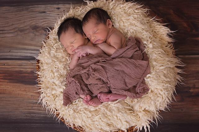 hnízdečko s dvojčátky